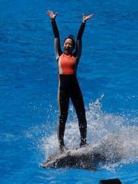 サーフィン - aws0607の写真コーナー