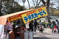 桜祭り - Sandwich