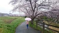 桜道☆ - お花とマインドフルネスな時間 ~花工房GreenBell~