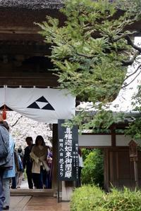 江ノ電沿線散策♪Part 3 - うろ子とカメラ。