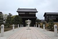 お散歩桜 その7 - パピヨン小雪の徒然日記
