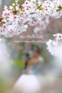 桜の木の下で - 色音あそび