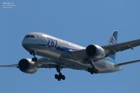 波紋 - 飛行機写真 ~旅客機に魅せられて~