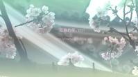 圧倒的桜。2017 - すずめtoめばるtoナマケモノ