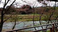 はなひらく - 金沢犀川温泉 川端の湯宿「滝亭」BLOG