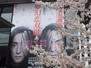 赤坂歌舞伎、ねこのわ茶話会、懇親会と続く - ご機嫌元氣猫の森公式ブログ
