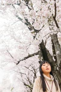 sakura. - 写真にまつわるモノコト-blog