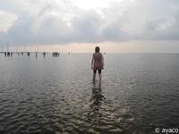 """[台中]""""アジアのウユニ塩湖"""" 台中の高美湿地に行ってきた!② - 台湾のたびしおり"""
