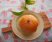 土浦市の小さなパン教室『Le soleil』5月のレッスンメニューのご案内 - Backe 605*memberお教室ナビ