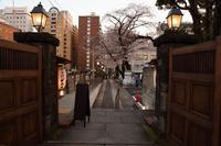 美容家の山野愛子さんが半生を過ごした邸宅で、いただく懐石料理(新宿区) - 旅プラスの日記