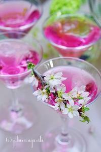 桜パーティ vol2 - しあわせ時間