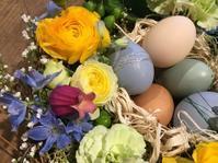 4月のフラワーレッスン 「小鳥の巣のアレンジ」 - Ikuko's decoroom