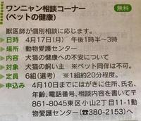 ワンニャン相談コーナー(熊本市動物愛護センター) - 熊本の動物愛護を考える会