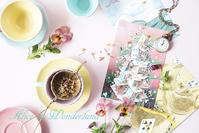 軽井沢絵本の森美術館 「ふしぎの国のアリス展」開催中~♪ - きれいの瞬間~写真で伝えるstory~