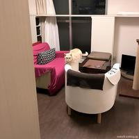ごちそう - 賃貸ネコ暮らし|賃貸住宅でネコを室内飼いする工夫