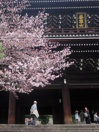 ぶらり京都-133 [知恩院の友禅斎] - 続・感性の時代屋