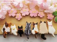 桜 さくら~♪ * 猫ちゃんたちのお花見 - nanako*sweets-cafe♪