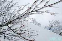 シャバ雪を求めて - じゅんりなブログ