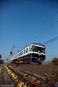 愛情込めた花たちと。 - 山陽路を往く列車たち