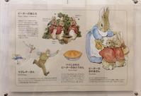ピーターラビットのお父さん - coco diary 山口県 お花と絵とテーブルコーディネートレッスン