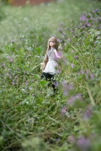 春を満喫 - 写真生活2