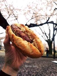 タルイさんのパンで代々木公園お花見 - パンある日記(仮)@この世にパンがある限り。