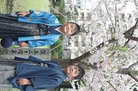 愛息`S桜と満開♪ - おもひでちっく