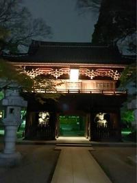 夜桜 - 幸せプチ開運生活-火、木、土、ブログ更新中
