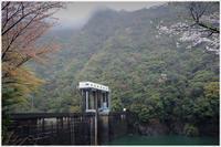 雨の古座川 - 写真画廊 ナカイノブカズ 2