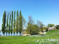 今年初のバーベキュー - ドイツの優しい暮らし Part 2