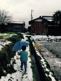 今年の始まり。そして、着物「白秋」 - 蒼暮雨に詠う