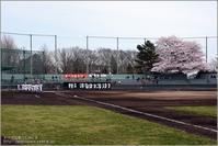 2017春 国府台球場の桜 小金対市川南(前) - すべては夏のためにⅡ