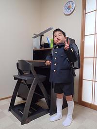 ぴかぴかの1年生 - 清治の花便り