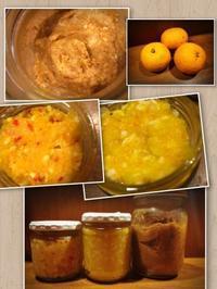 自家製 発酵調味料 - ナチュラル キッチン せさみ & ヒーリングルーム セサミ