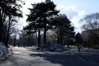 まだちょっと寒い4月の日曜日 - なよら風