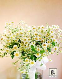 マトリカリアのウエディングブーケ♪ - Bouquets_ryoko