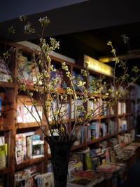 毎週土曜日に活け込みの「WORLD BOOK CAFE」さん。今週は「吉野桜」。2017/04/08。 - 札幌 花屋 meLL flowers