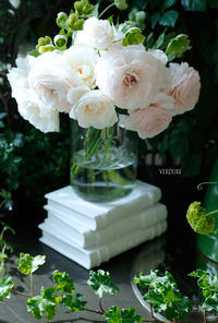 満開のラナンキュラス - VERDURE 「ヴェルデュール花教室」花暮らしブログ