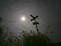 ゲンジボタル上陸幼虫観察(再) - オヤヂのご近所仲間日記