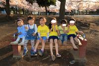 桜と子供たち - くすりやさんの戯言