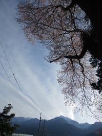 カラオケ     4月12日 - 雲居