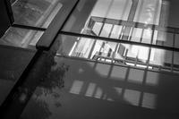 2017年4月14日 早春の商業ビルにまとわりつく光蜥蜴 - Silver Oblivion