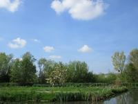 季節とともに進む畑仕事 - フランス Bons vivants idees d'aujourd'hui