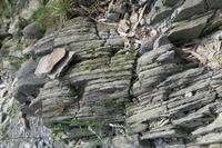 一枚岩 - doppler