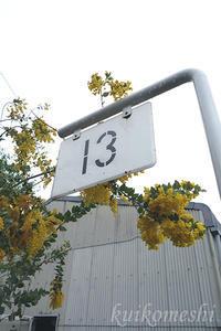 【安城市】13倉庫 YETI FOODWORKS - クイコ飯-2