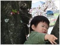 岡崎での最後の夜になりました - さくらおばちゃんの趣味悠遊