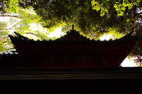 川越 氷川神社 - belakangan ini