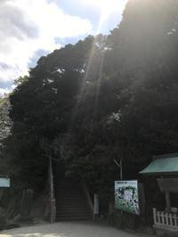今日から営業しております。 - 神戸市垂水区 Petit Lapin~プチ・ラパン~