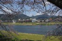 No  79 県北さくら巡り(4月12日) - カメラをもってぶらぶら散歩中