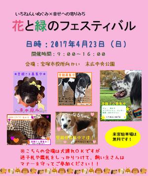 桜咲く!香川への送金完了~!! - Shippo-Mum ~しっぽのお母さんの贈り物~